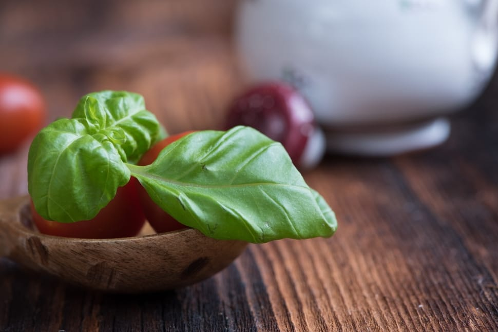 Basil - Summer's Loudest Member of the Garden | Not Entirely Average, A Lifestyle Blog