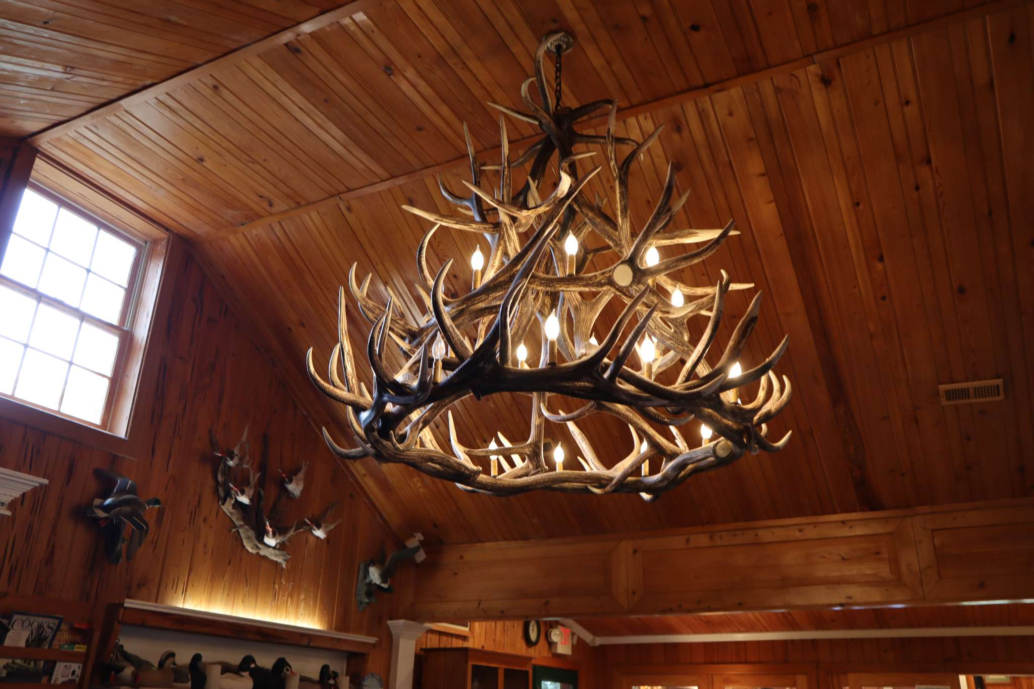 chandelier made of antlers