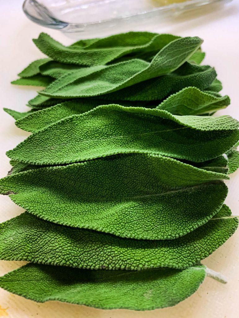image of fresh sage leaves