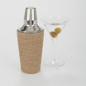 cocktail shaker and martini
